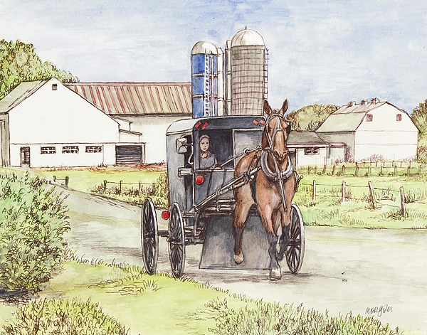 Amish Farm Horse And Buggy Print by Morgan Fitzsimons