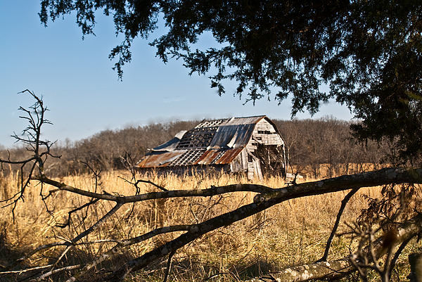 Arkansas Barn 1 Print by Douglas Barnett