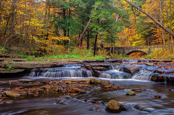 Autumn Cascades Print by Mark Papke