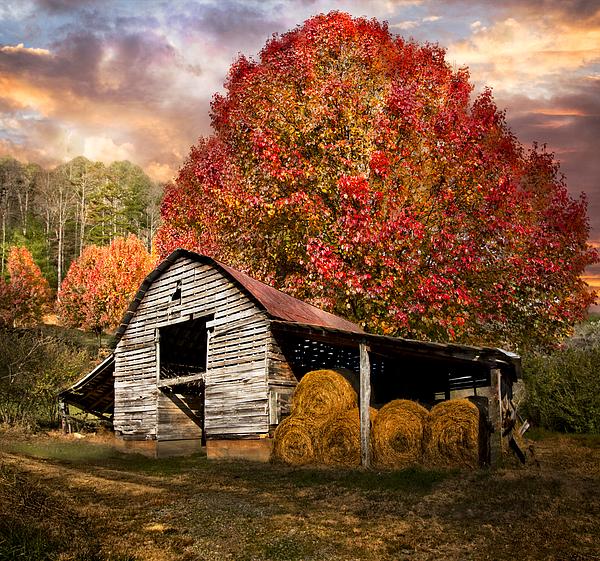 Autumn Hay Barn Print By Debra And Dave Vanderlaan