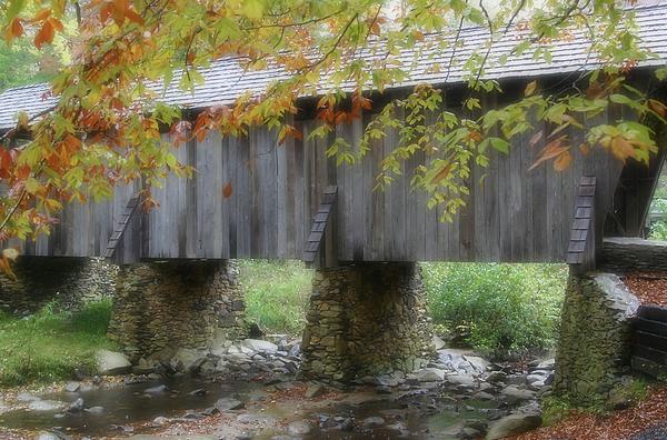 Autumns Bridge Print by Karol  Livote