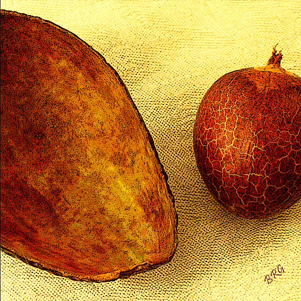 Avocado Seed And Skin II Print by Ben and Raisa Gertsberg
