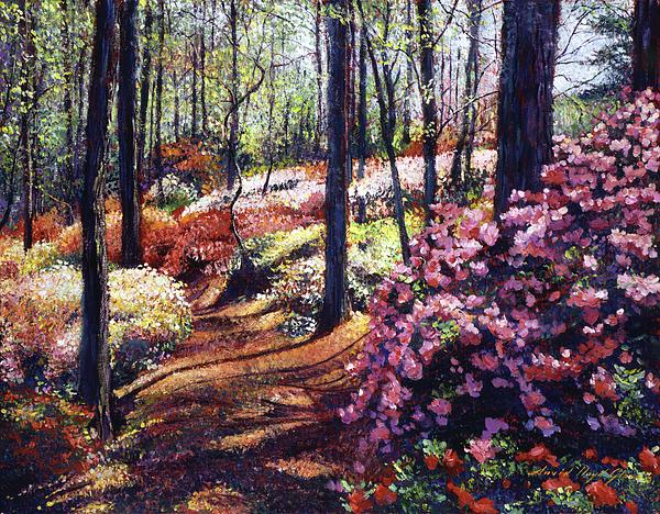 Azalea Forest Print by David Lloyd Glover