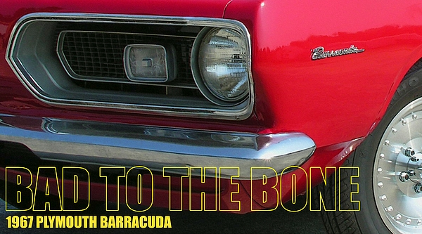 Bad To The Bone Print by Richard Rizzo