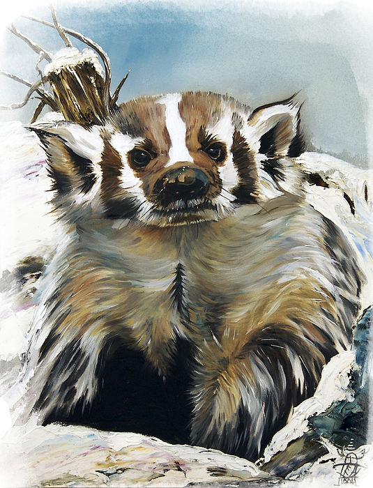 Badger - Guardian Of The South Print by J W Baker