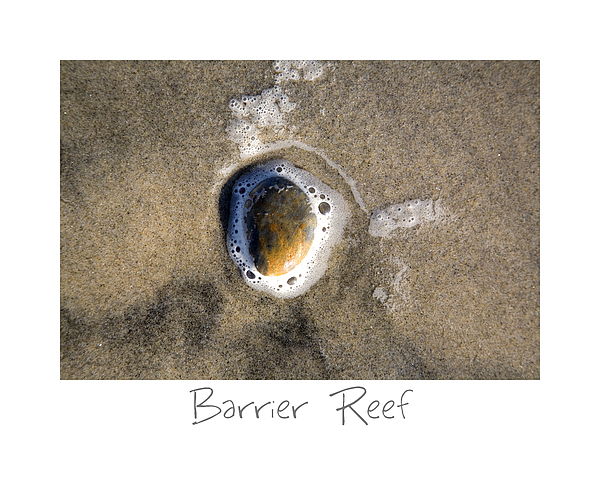 Barrier Reef Print by Peter Tellone