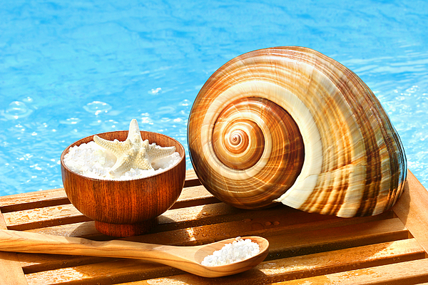Bath Salts And Sea Shell By The Pool Print by Sandra Cunningham