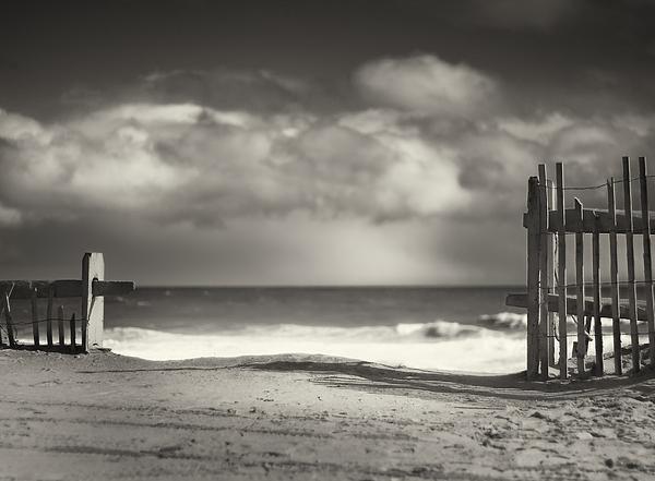 Beach Fence - Wellfleet Cape Cod Print by Dapixara Art
