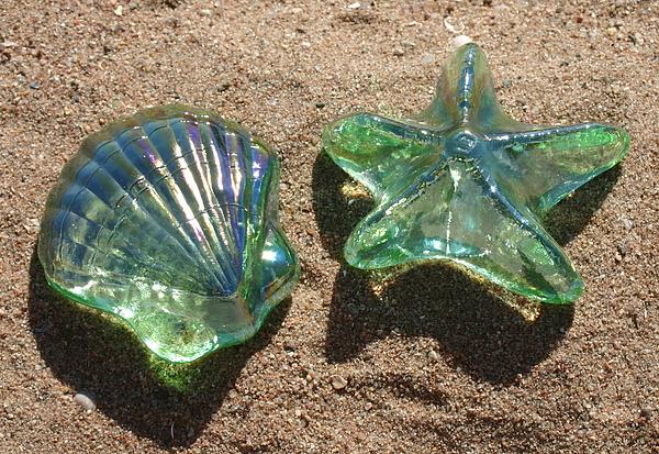 Beach Glass Print by Cindy Lee Longhini