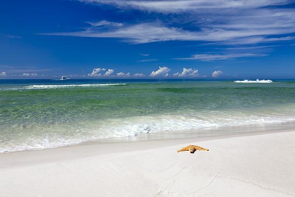 Beach Splendour Print by Janet Fikar