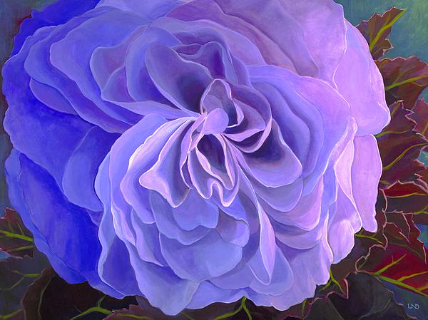 Laura DeDonato - Begonia Bloom