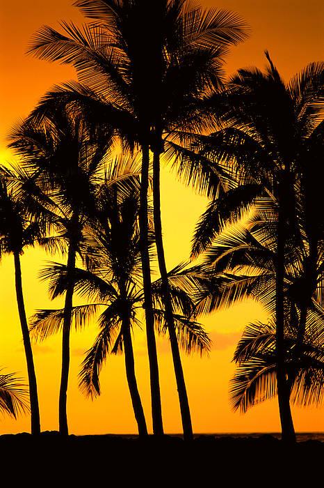 Big Island, View Print by Greg Vaughn - Printscapes