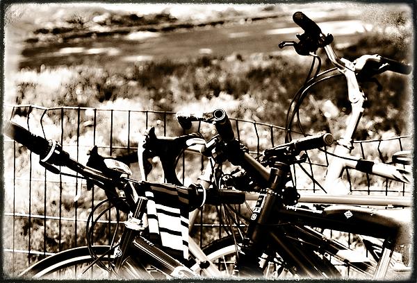 Bike Against The Fence Print by Madeline Ellis