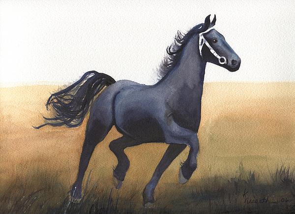 Black Stallion Print by Kathy Nesseth