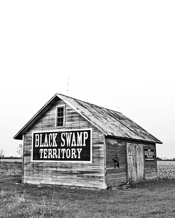 Andrew Weills - Black Swamp Territory