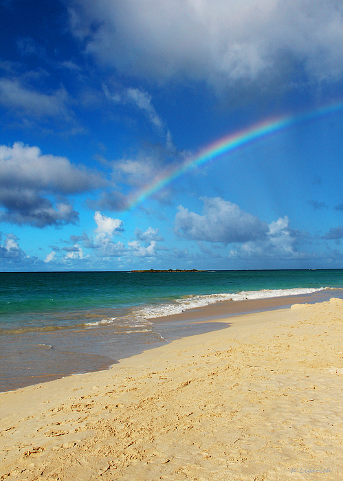 Blessed With A Rainbow Print by Kerri Ligatich