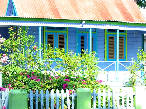 Blue Chattel House Print by Barbara Marcus