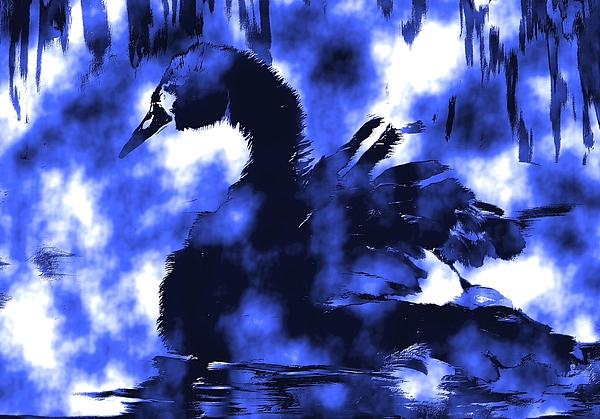 Karen Harding - Blue Swan
