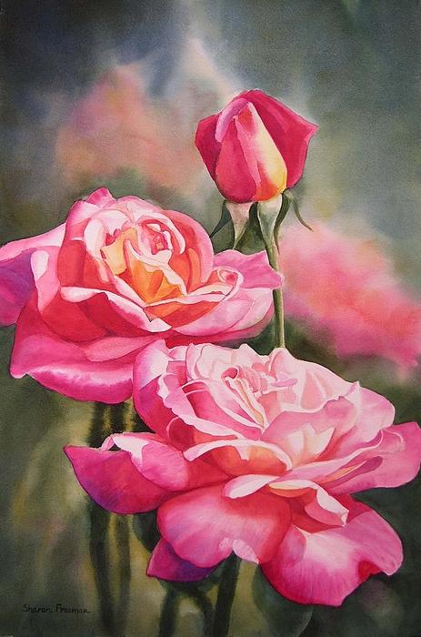 Blushing Roses With Bud Print by Sharon Freeman