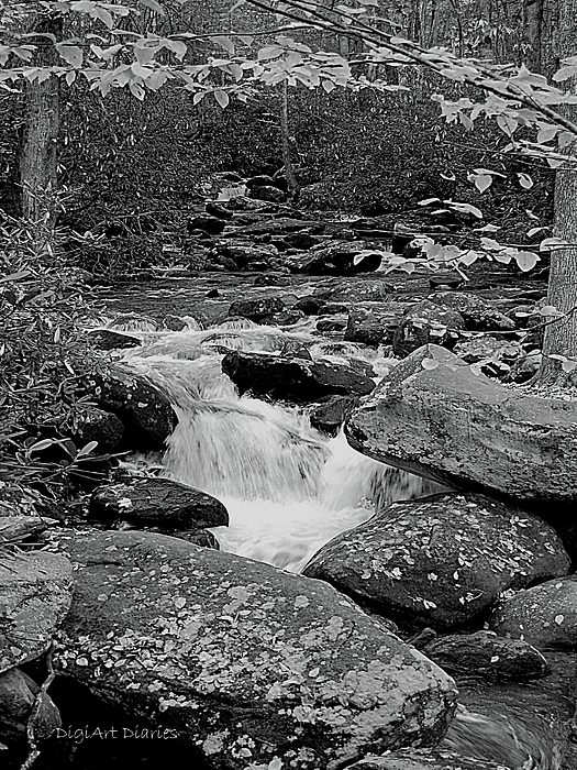Boulder Creek Print by DigiArt Diaries by Vicky B Fuller