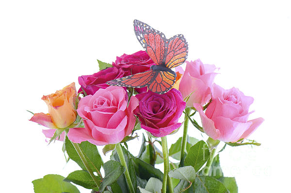 Bouquet Of Multi Color Rose Buds With Butterfly by ...