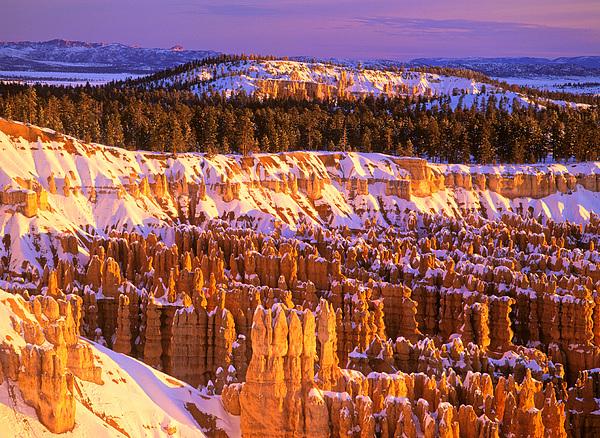 Johan Elzenga - Bryce Canyon winter sunrise