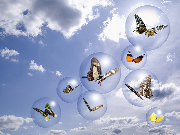 Butterflies And Bubbles Print by Tony Cordoza