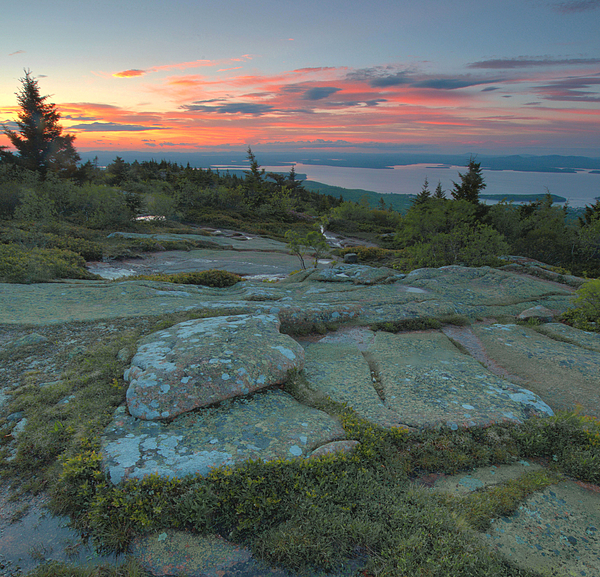 Cadillac Mountain Sunset Print by Stephen  Vecchiotti