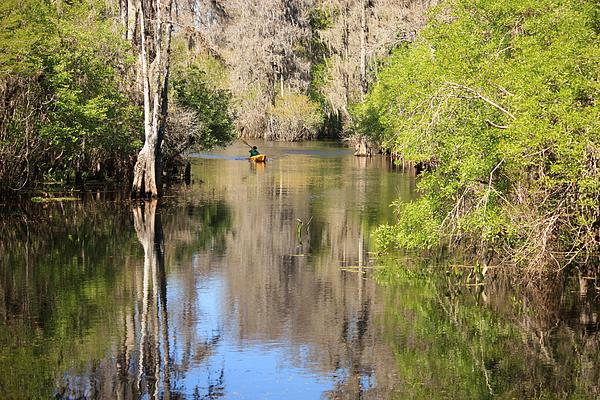 Canoeing On The Hillsborough River Print by Carol Groenen