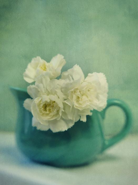 Carnations In A Jar Print by Priska Wettstein