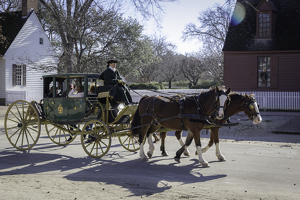 Carriage Ride In The Winter By Teresa Mucha