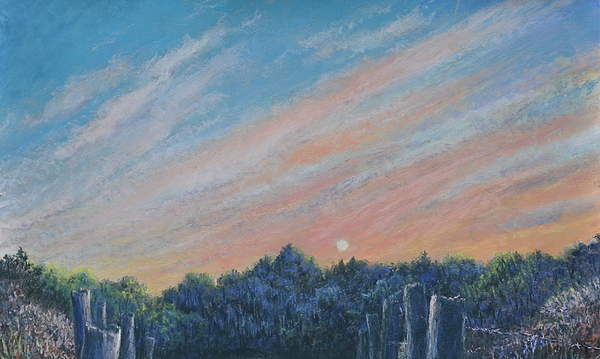 Catching The Sunset Print by Penny Neimiller