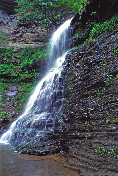Cathedral Falls In Spring Print by Thomas R Fletcher