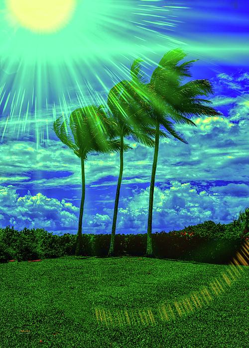 John M Bailey - Celebrating Florida