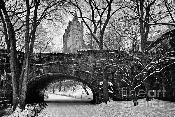 Central Park And The San Remo Building Print by John Farnan