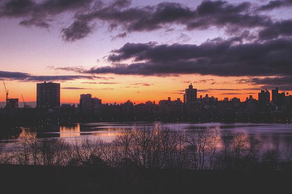 Central Park Sunrise Print by Ariane Moshayedi