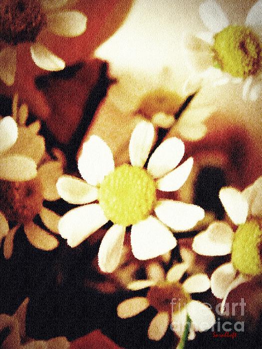 Sarah Loft - Chamomile Memories 1