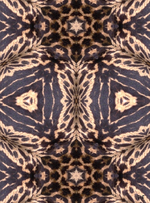 Cheetah Print Print by Maria Watt