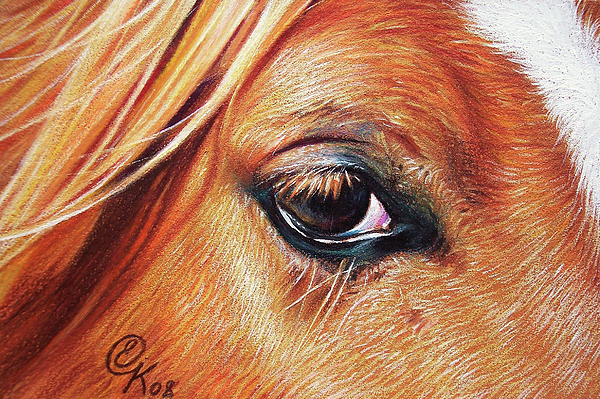 Chestnut Close-up Print by Elena Kolotusha