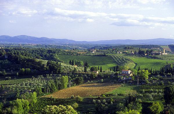 Chianti Region In Italy Print by Gregory Ochocki and Photo Researchers