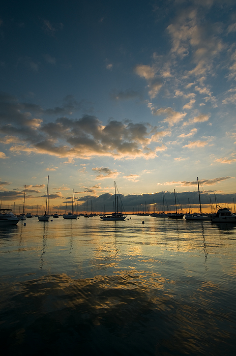 Chicago Harbor Sunrise Print by Steve Gadomski