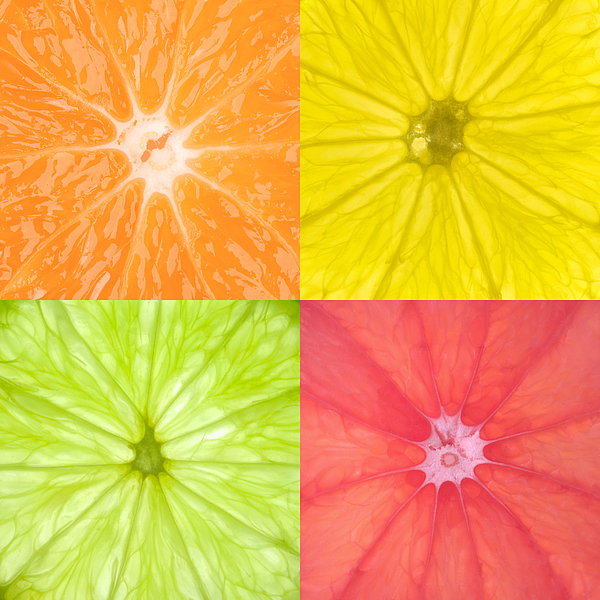 Citrus Fruits Print by Richard Thomas