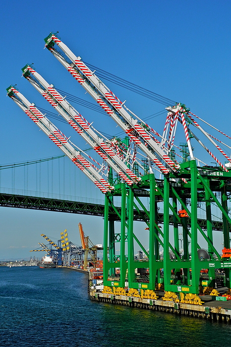 Colorful Cranes In San Pedro Harbor By Kirsten Giving