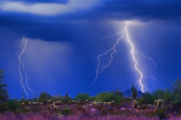 Colorful Sonoran Desert Storm Print by James BO  Insogna