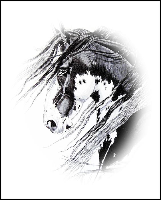 Commanche Print by Cheryl Poland
