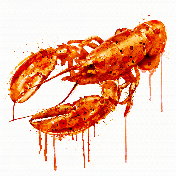 Crawfish Watercolor Painting By Marian Voicu