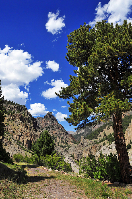 Creede Print by Skip Hunt