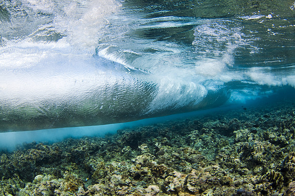 Curl Of Wave From Underwater Print by Dave Fleetham - Printscapes