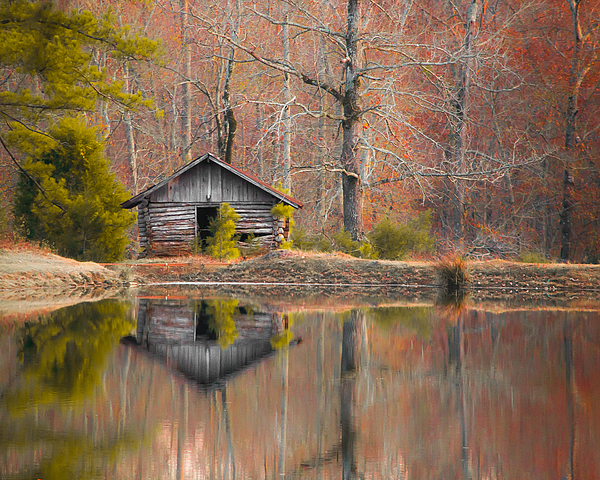 Shelby  Young - Custom Crop - Cabin by the Lake
