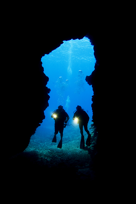 Divers Silhouetted Through Reef Print by Dave Fleetham - Printscapes